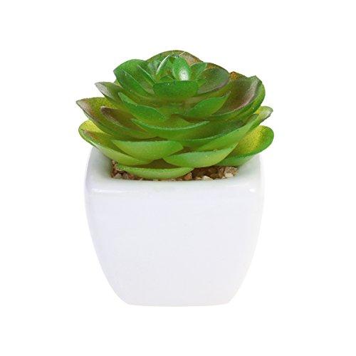 Mini Nette Topf Sukkulenten Pflanzen Arrangements Kleine Künstliche Gefälschte Pflanzen in Töpfe Container für Desktop Balkon Tisch Dekoration (Round Rose)