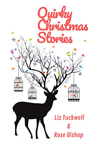 Quirky Christmas Stories (English Edition) -