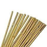 MasterKeepshos Natural Bamboo Garden Canes, Brown, 183 cm