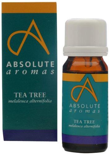 Absolute Aromen Tea Tree 10ml reinem ätherischen Öl (Gesichts-dampf-kräuter)