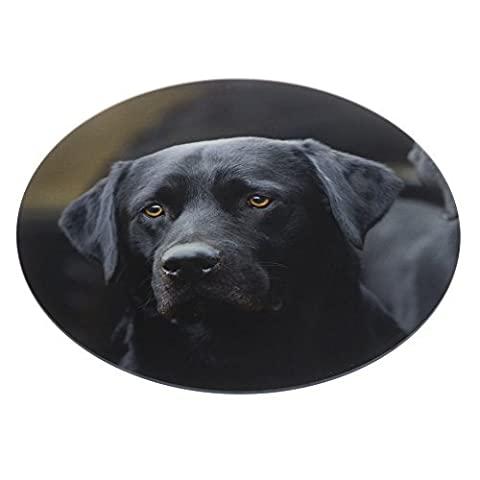 Black Labrador glass food platter. Great for serving cold meats, smoked salmon, suchi and a whole host of other foods. Great in the kitchen for resting hot pans on. Dishwasher proof. Large sized 30cm diameter. A nice gift for dog