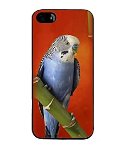 PrintVisa Designer Back Case Cover for Apple iPhone SE (Pleasant nature Loving birds)
