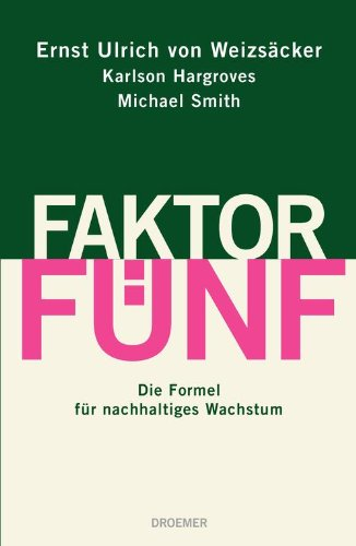 Faktor Fünf: Die Formel für nachhaltiges Wachstum - Jahrhunderts Formel