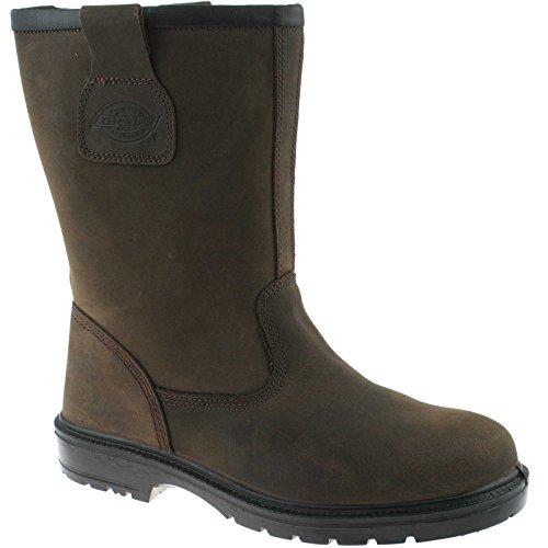 Dickies FD9204 Nevada Rigger Sicherheit Arbeit Stiefel s Leder ausgekleidet Shoe Braun