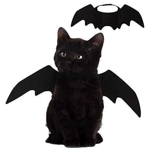 Renendi Halloween-Requisiten für Haustiere, Fledermaus, Flügel, Katze, Hund, Kürbiss, Fledermaus, Kostüm, Partyzubehör für kleine Tiere, Welpen, Kätzchen - Narr Hunde Kostüm