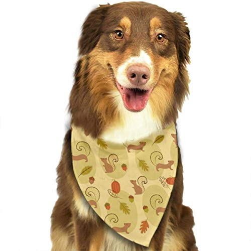 Cute Dog Kostüm Verkauf - nxnx Pet Dog Bandana Scarf Pack Triangle Bibs Cute Squirrels Pine Nut Pumpkin Printing Kerchief Set Accessories for Small to Large Dogs Cats Pets