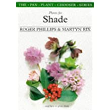 Plants for Shade & How to Grow Them