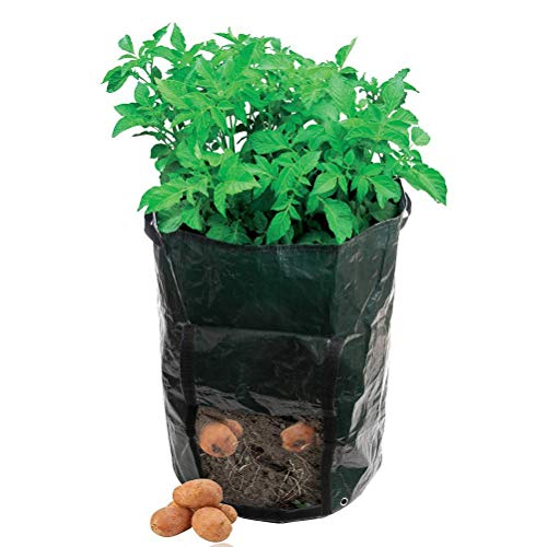 AmgateEu Garden Kartoffel-Pflanzbeutel, Gemüse, mit Öffnung, umweltfreundlich, wasserfest, PE ~35.56 cm Durchmesser x 45.72 cm H)