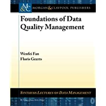 Foundations of Data Quality Management (Synthesis Lectures on Data Management)
