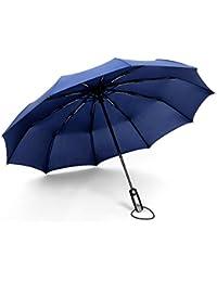 10 Varillas Paraguas Plegable de Viaje automático Ligero Resistente al Viento?Apertura Automático - Compacto - 3 PlieguesUltra Comodidad Mango