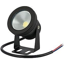Bloomwin Spots lED iP68 piscine éclairage noir boîte Blanc Froid 10 W 12 V