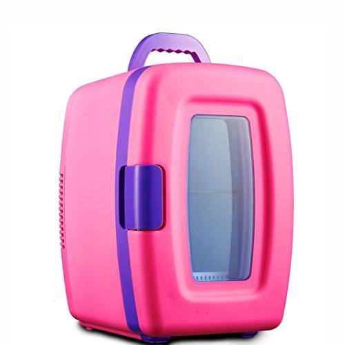 LT&NT Refrigerador de Coche 10 litros portátil eléctrico Nevera hogar Termo Cool...