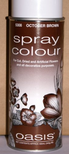 400ml-floristen-oasis-spruhfarbe-oktober-braun