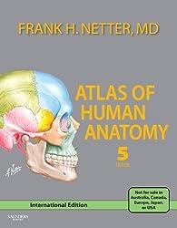 Atlas of Human Anatomy (Netter Basic Science) (International Edition) Edition: Fifth