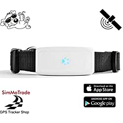TKSTAR Simmotrade 911 GPS Tracker für Hunde und große Katzen. Deutscher GPS Tracker Shop, deutsche Beschreibung, Telefon Support