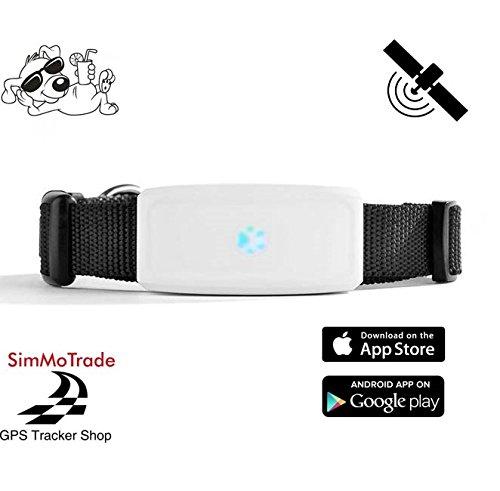 Simmotrade® TKSTAR 911 GPS Tracker für Hunde. Deutscher GPS Tracker Shop, deutsche Beschreibung, Telefon Support