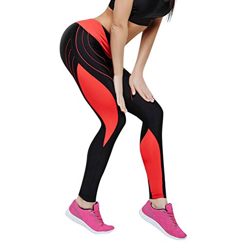 Sporthosen Leggings Yoga Hose Frauen Trainings Freizeithosen Slim Fit Strumpfhose Gymnastik Hosen Radhose Lange Hosen Eignungs Elastische Gamaschen Optik Hose,ABsoar (L, Orange) -