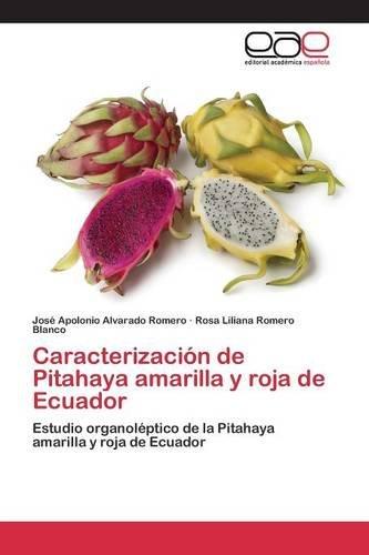 Caracterización de Pitahaya amarilla y roja de Ecuador por Alvarado Romero José Apolonio