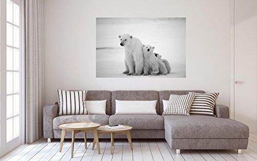 Eisbär Bär Alaska Eisscholle XXL Wandbild Foto Poster P0106 Größe 120 cm x 80 cm, Größe 120 cm x 80 cm -