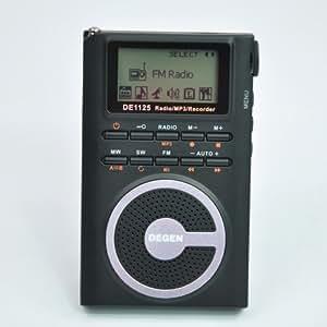 Degen DE1125 Ultra-Thin AM/FM/SW Radio with 2GB MP3 Player/Digital Recorder