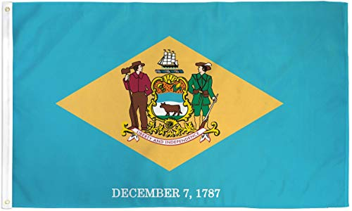 Delaware Flagge 2 Poly 1,5 x 0,9 m -