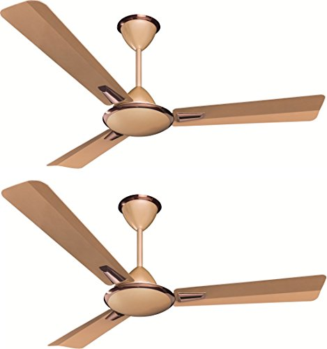 Crompton Aura Prime 48-inch Ceiling Fan (Birken Effect, Pack of 2)