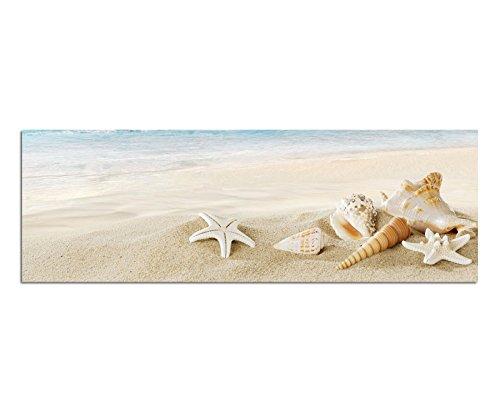 Bilder Wand Bild - Kunstdruck 120x40cm Sandstrand Meer Muscheln Schneckenhäuser