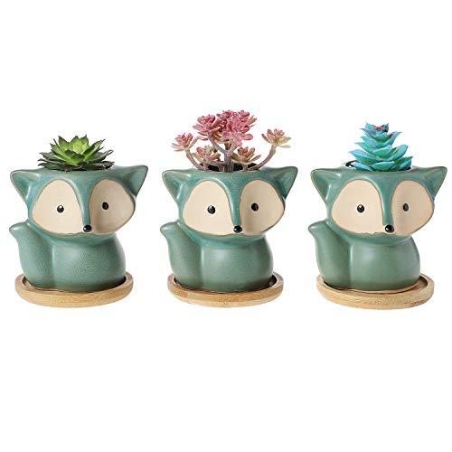 T4U Vasetti per Piantine Ceramica con Vassoio di bambù Set di 3, Piccola Vasi in Ceramica per Piante Grasse da Interno Volpe Vasi Cactus per Succulente Piccoli