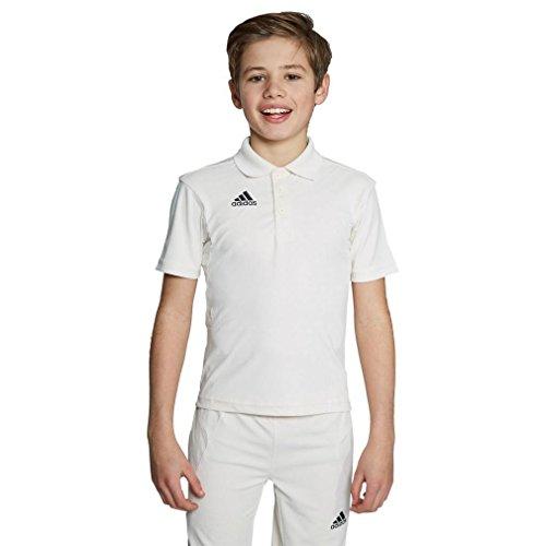 adidas Howzat JUNIOR Cricket T-Shirt, Weiß, 10 Jahre -
