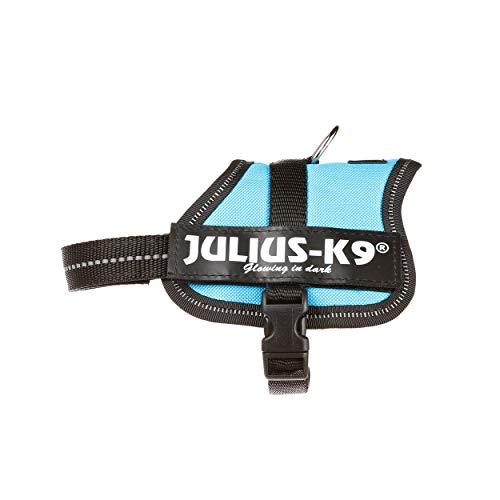 Julius-K9, 162AM-BB2, K9-Powergeschirr, Größe: Baby 2, aquamarine