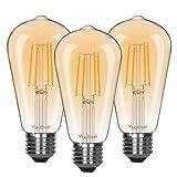 Youthee LED Dimmbare Edison Glühbirnen 4W Vintage Glühbirne, 2600-2700K Warm Licht (Amber Glass), Antike LED Edison Glühbirnen, ST64, E27 LED Lampensockel (4W- 3er Pack)