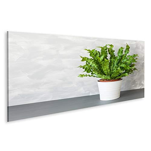 Bild Bilder auf Leinwand Zimmerpflanze Asplenium Nidus im weißen Topf Wandbild, Poster, Leinwandbild QTD