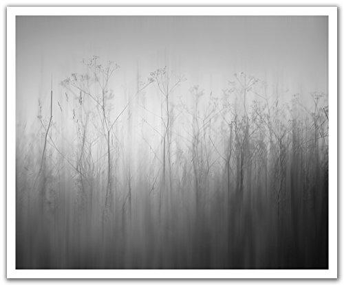 JP London pos2398ustrip schälen und Stick Abnehmbare Wandtattoo Aufkleber Wandbild Blätter PoE grau Abstract Floral, 24von 19.75-inch (Abstract-sammlung)