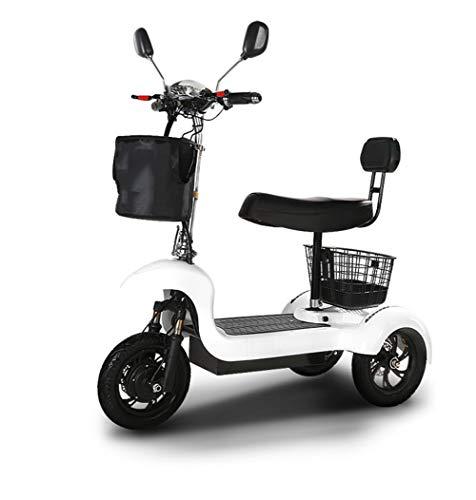 Urcar Elektrisches Dreirad Elektroroller mit 3 Rädern Einzelmotor 500W 48V Elektroroller mit Sitz Erwachsene