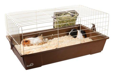 Liberta Riviera Taggia Cage d'intérieur pour lapin nain et cochon d'Inde Taille M
