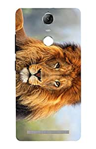 Cell Planet's Designer Printed Mobile Back Cover Compatible for