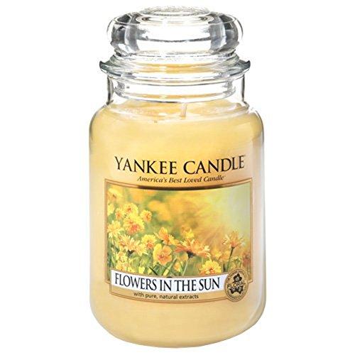 Offizielles Yankee Candle Blumen in der Sonne Traditionelle Classic Signature großes Glas 623g–Sicher Mail Order Box Ostern-advent-kalender
