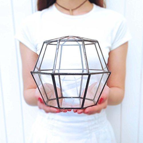 octagon-geometric-glass-terrarium-modern-planter-indoor-gardening-handmade