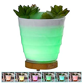 Humidifier Simulation Green Plant Essential Oil Aromatherapy Machine, Creative Office Home ultrasonic Mini Silent air humidifier,for Yoga,Spa, Bedroom, Baby Room