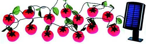 solar-luz-cadena-tomates