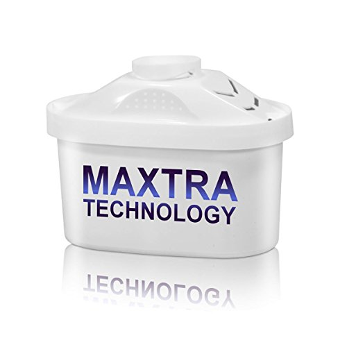 A photograph of Brita Maxtra