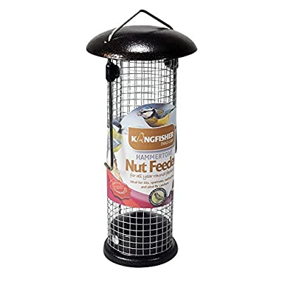 Kingfisher Premium Hammertone Finish Bird Nut Feeder by King Fisher