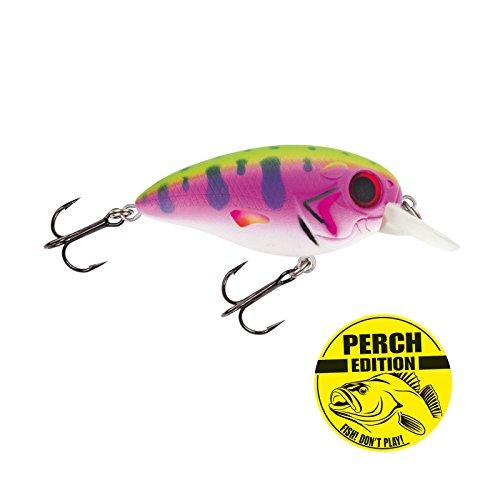 Wobbler Barsch angeln. Jackson Barschwobbler 5.3 Rainbow Trout Wobbler