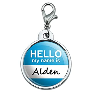 Chrome Plated Metal Small Pet ID Dog Cat Tag Hello My Name Is AA-AM - Alden