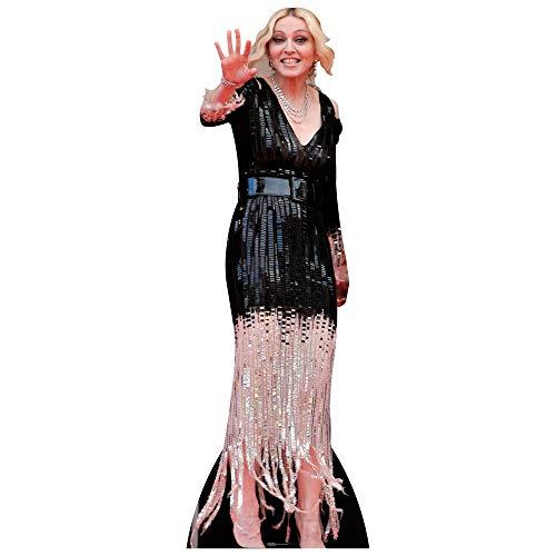 Madonna Lifes Standup Poster ()