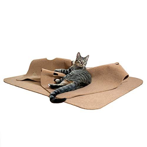 CanadianCat Company ® | Spielteppich XXL für Katzen 90 x 120 cm Katzenspielteppich für Katzen
