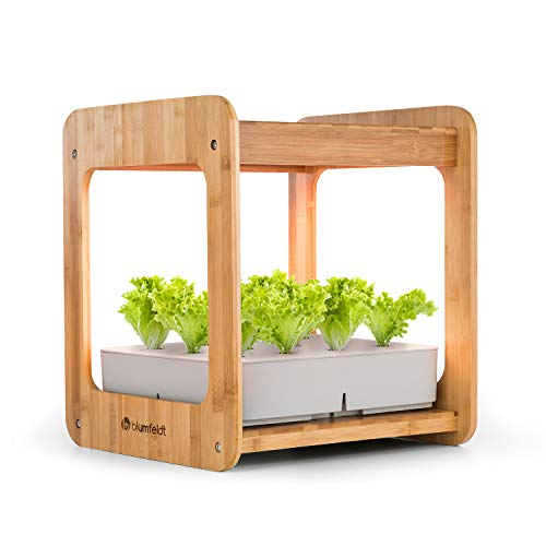 blumfeldt Urban Bamboo - Indoor Garden, Pflanzsystem, Hydroponisch, automatische Beleuchtung mit 24W LED, integrierte Umwälzpumpe, 7L Wassertank, echter Bambus, 12 Pflanzen, Zimmergewächshaus