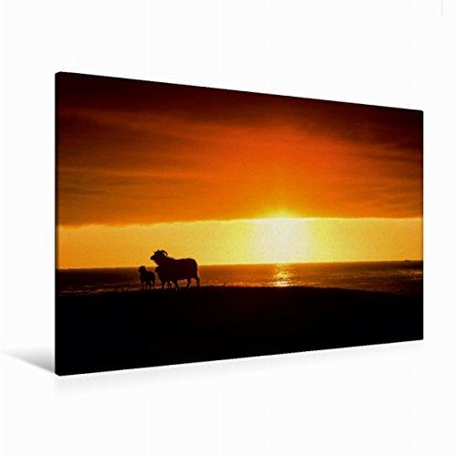 Preisvergleich Produktbild Premium Textil-Leinwand 120 cm x 80 cm quer, Ein Motiv aus dem Kalender Beautiful Nature - Iceland | Wandbild, Bild auf Keilrahmen, Fertigbild auf echter Leinwand, Leinwanddruck (CALVENDO Orte)