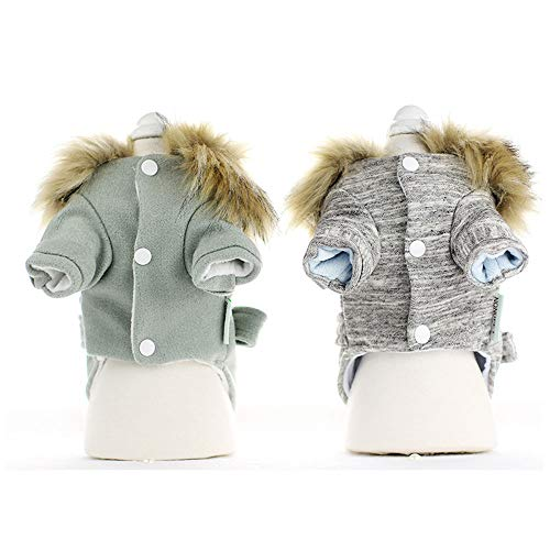 (GJFeng Puppy Dog Kleidung Herbst Und Winter Haustier Kleidung Teddybär Bär Verdickung Vierbeinigen Windjacke (Farbe : Green, größe : M))