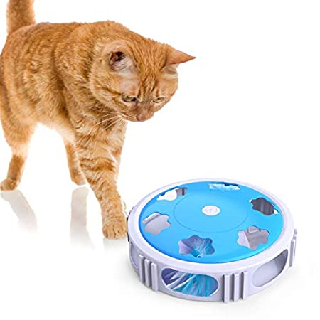 DADYPET Katzenspielzeug, Interaktives Katzenspielzeug, Elektronisches Spielzeug für Katzen mit Feder LED Licht, Glocken…